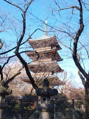 上野の東照宮から1