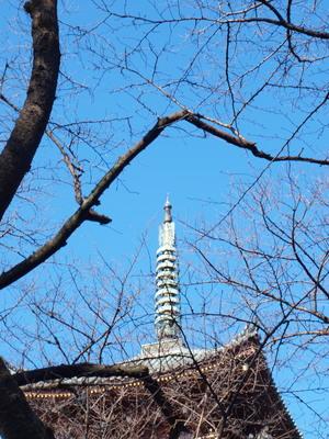 上野の東照宮から2